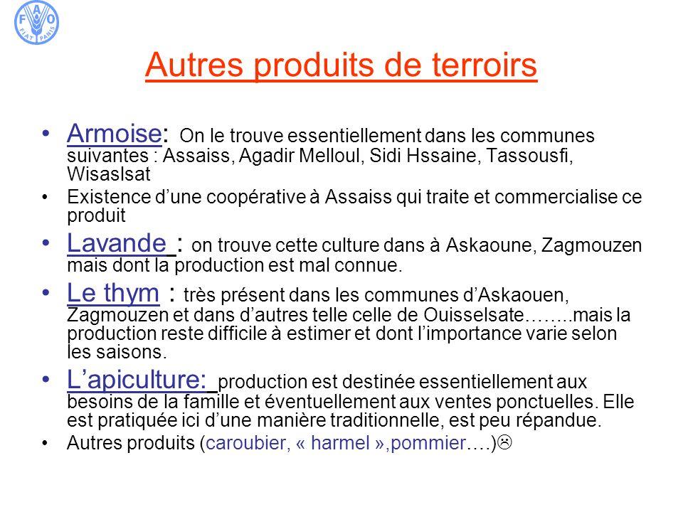 Autres produits de terroirs Armoise: On le trouve essentiellement dans les communes suivantes : Assaiss, Agadir Melloul, Sidi Hssaine, Tassousfi, Wisa