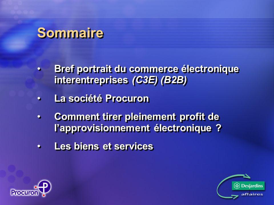 2 Sommaire Bref portrait du commerce électronique interentreprises (C3E) (B2B) La société Procuron Comment tirer pleinement profit de lapprovisionnement électronique .