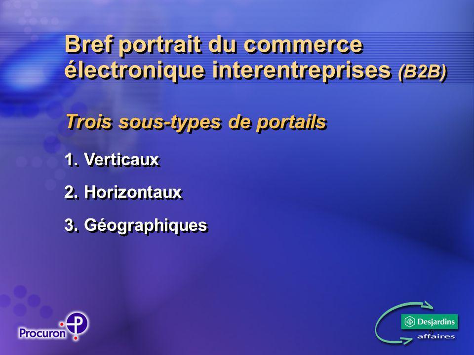 6 Bref portrait du commerce électronique interentreprises (B2B) Trois sous-types de portails 1.Verticaux 2.Horizontaux 3.Géographiques 1.Verticaux 2.Horizontaux 3.Géographiques
