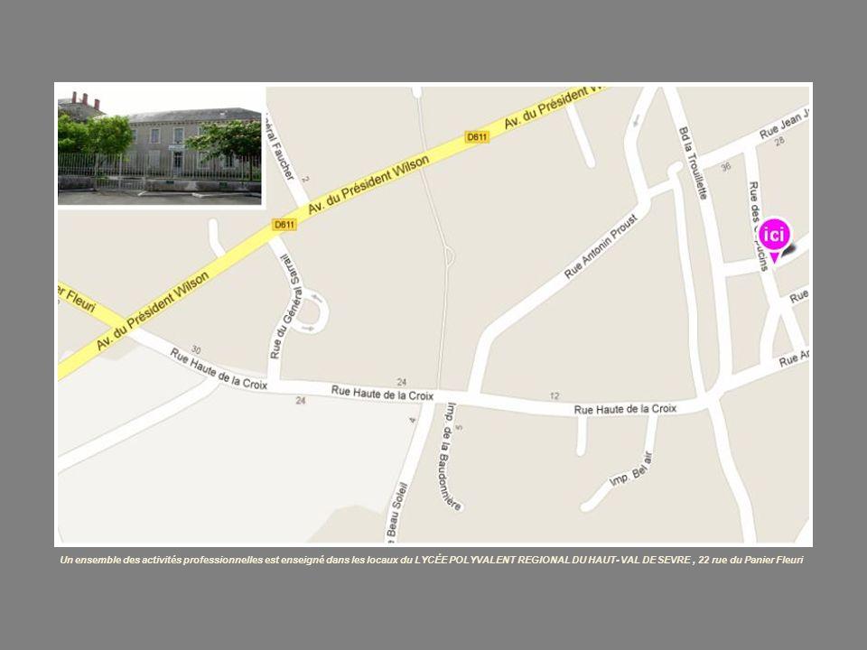 Un ensemble des activités professionnelles est enseigné dans les locaux du LYCÉE POLYVALENT REGIONAL DU HAUT- VAL DE SEVRE, 22 rue du Panier Fleuri