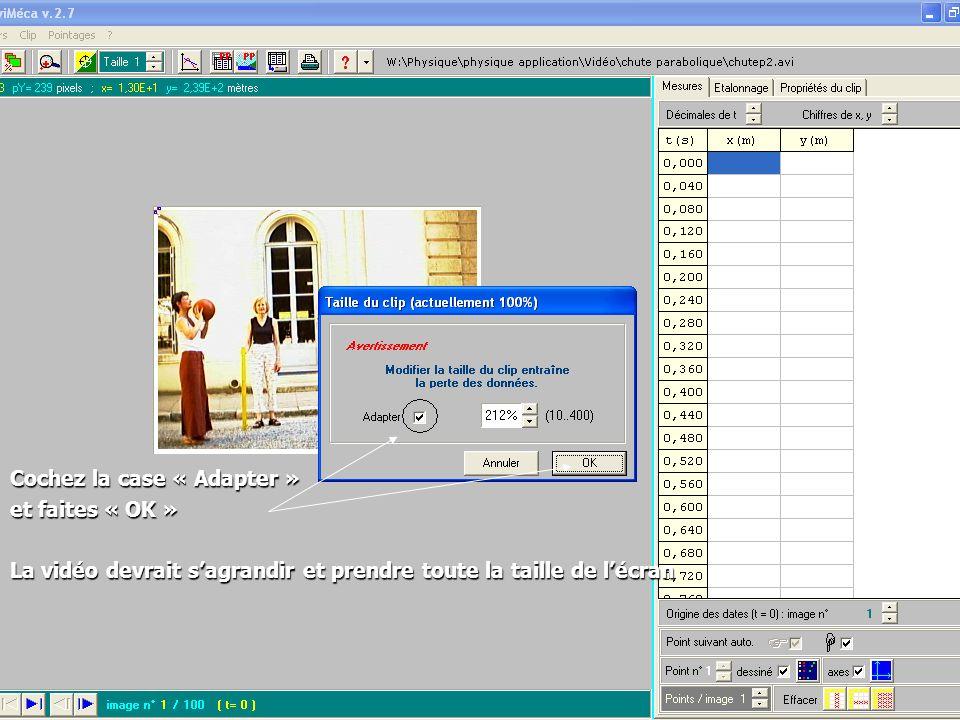 Cochez la case « Adapter » et faites « OK » La vidéo devrait sagrandir et prendre toute la taille de lécran