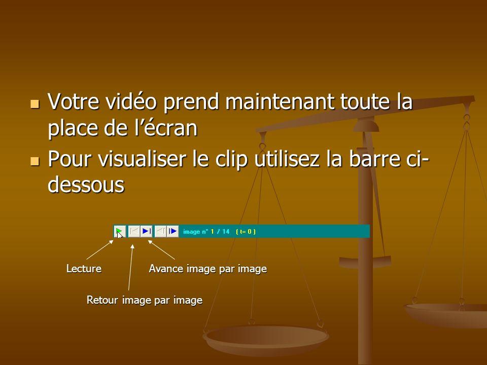 Votre vidéo prend maintenant toute la place de lécran Pour visualiser le clip utilisez la barre ci- dessous Lecture Avance image par image Retour imag