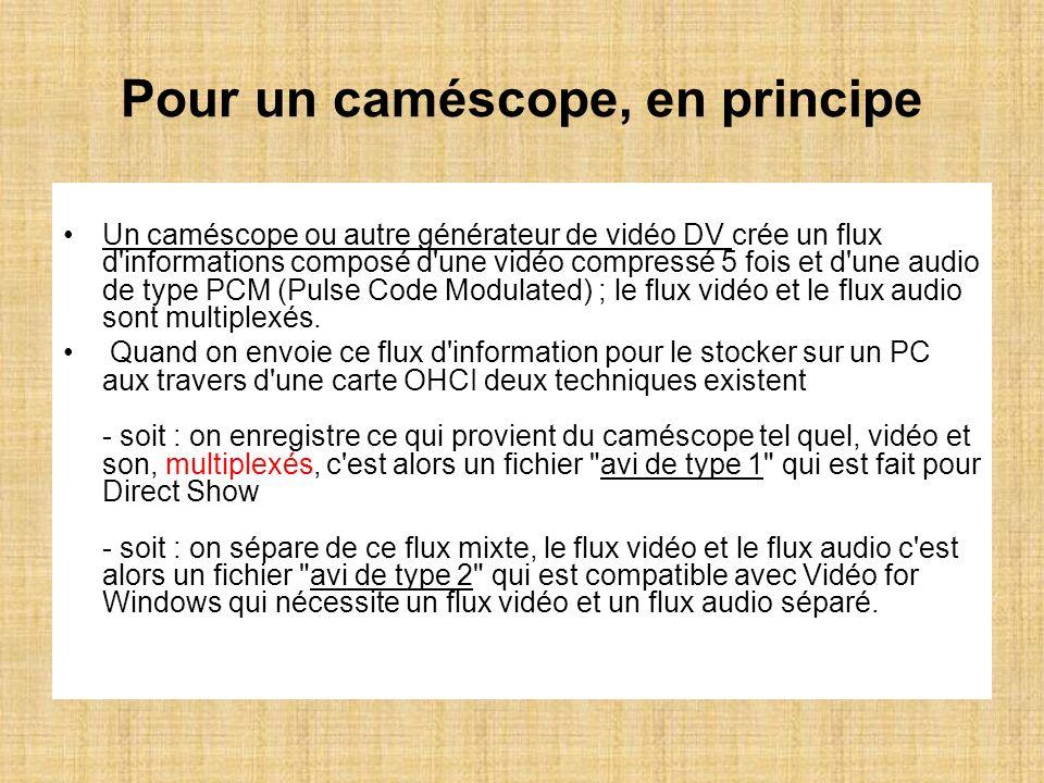 Pour un caméscope, en principe Un caméscope ou autre générateur de vidéo DV crée un flux d'informations composé d'une vidéo compressé 5 fois et d'une
