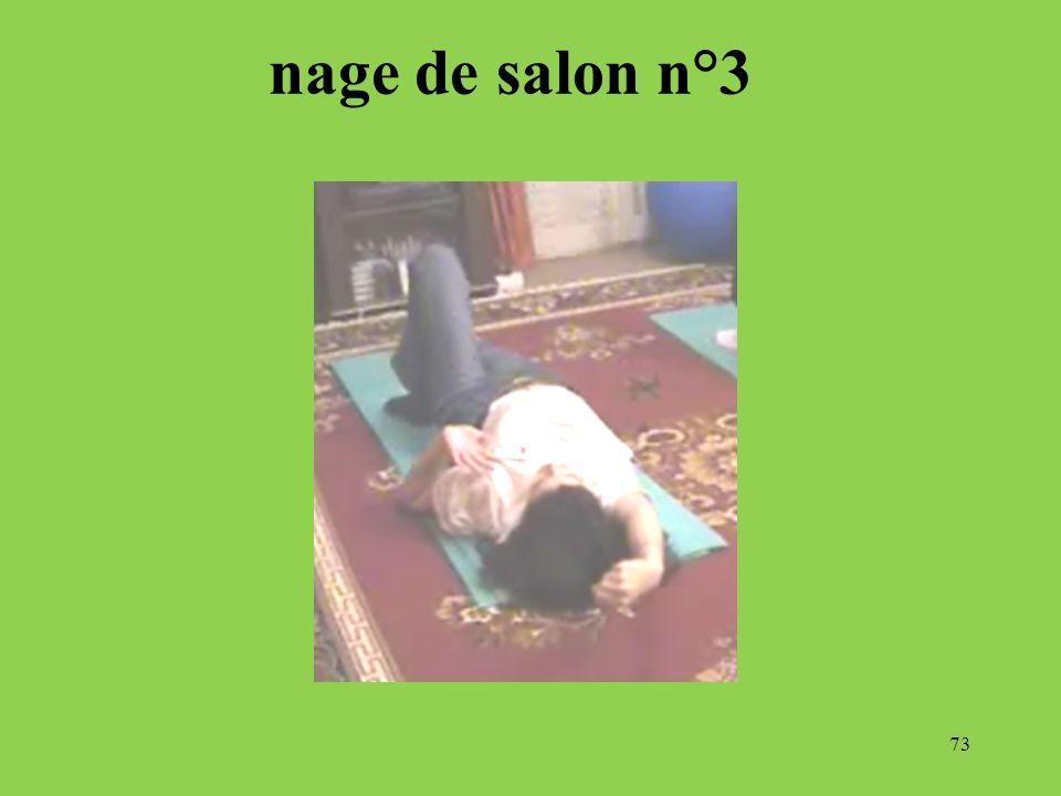 73 nage de salon n°3
