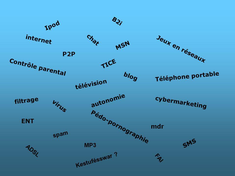 internet P2P chat blog Téléphone portable télévision mdr virus Pédo-pornographie cybermarketing Contrôle parental MSN TICE B2i autonomie filtrage ENT