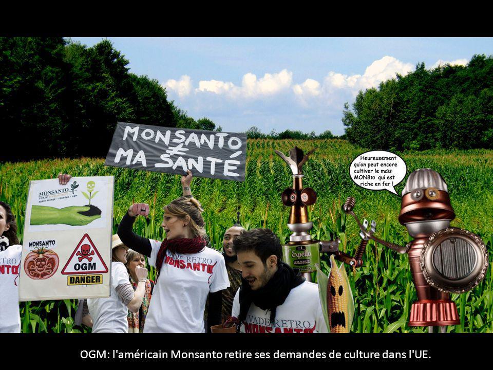 OGM: l'américain Monsanto retire ses demandes de culture dans l'UE.