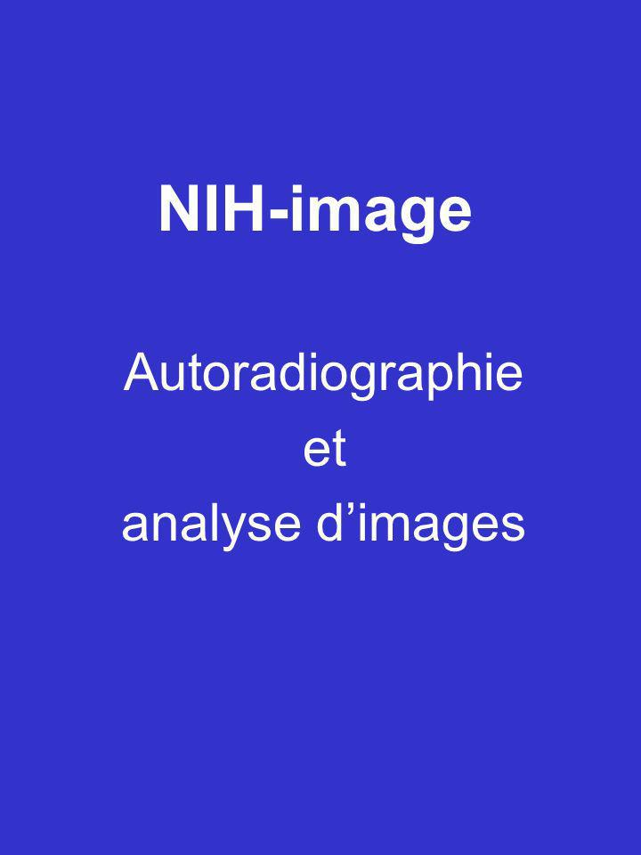 NIH-image Autoradiographie et analyse dimages