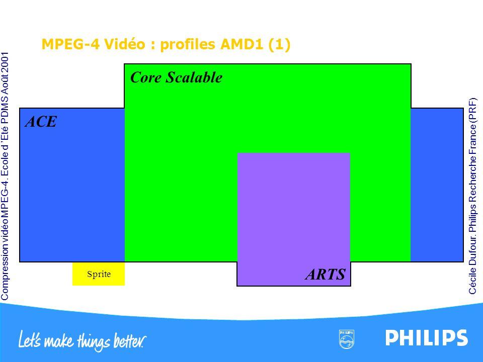 Compression vidéo MPEG-4. École d Été PDMS Août 2001 Cécile Dufour. Philips Recherche France (PRF) MPEG-4 Vidéo : profiles AMD1 (1) H263 Video Packets