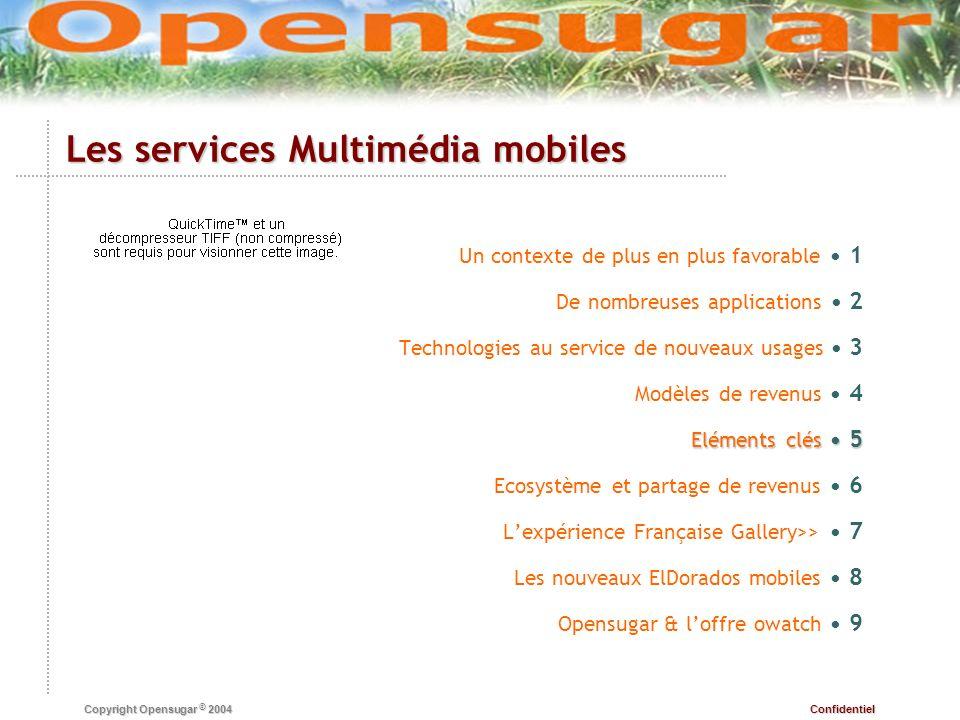 Confidentiel Copyright Opensugar © 2004 Eléments clés 5 Un contexte de plus en plus favorable 1 De nombreuses applications 2 Technologies au service d