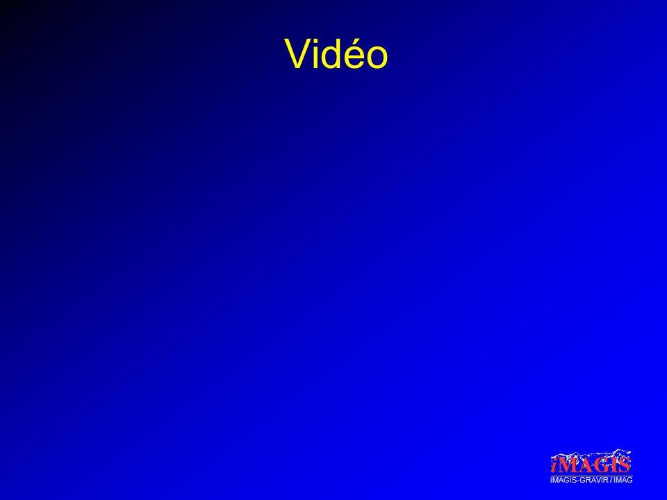 iMAGIS-GRAVIR / IMAG Vidéo