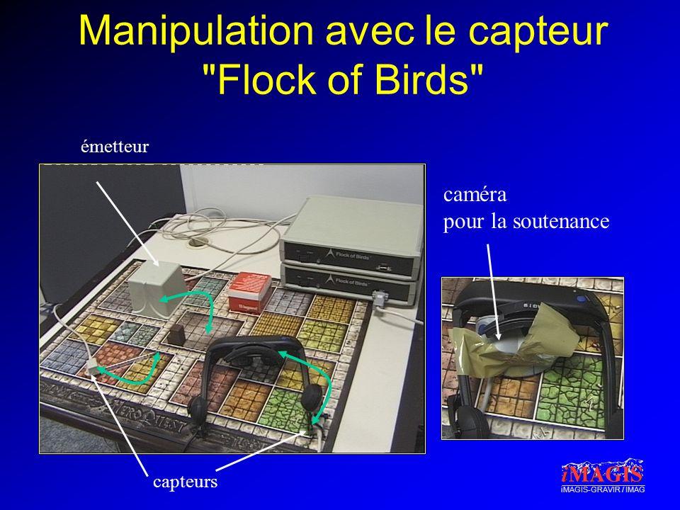 iMAGIS-GRAVIR / IMAG Manipulation avec le capteur Flock of Birds capteurs émetteur caméra pour la soutenance