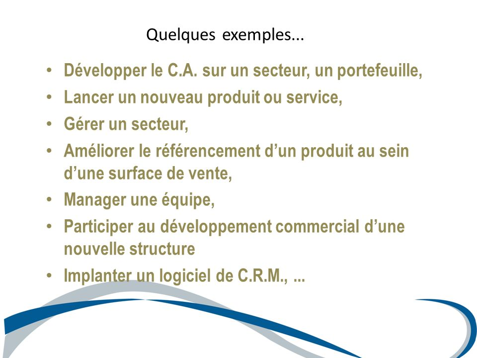 Développer le C.A. sur un secteur, un portefeuille, Lancer un nouveau produit ou service, Gérer un secteur, Améliorer le référencement dun produit au
