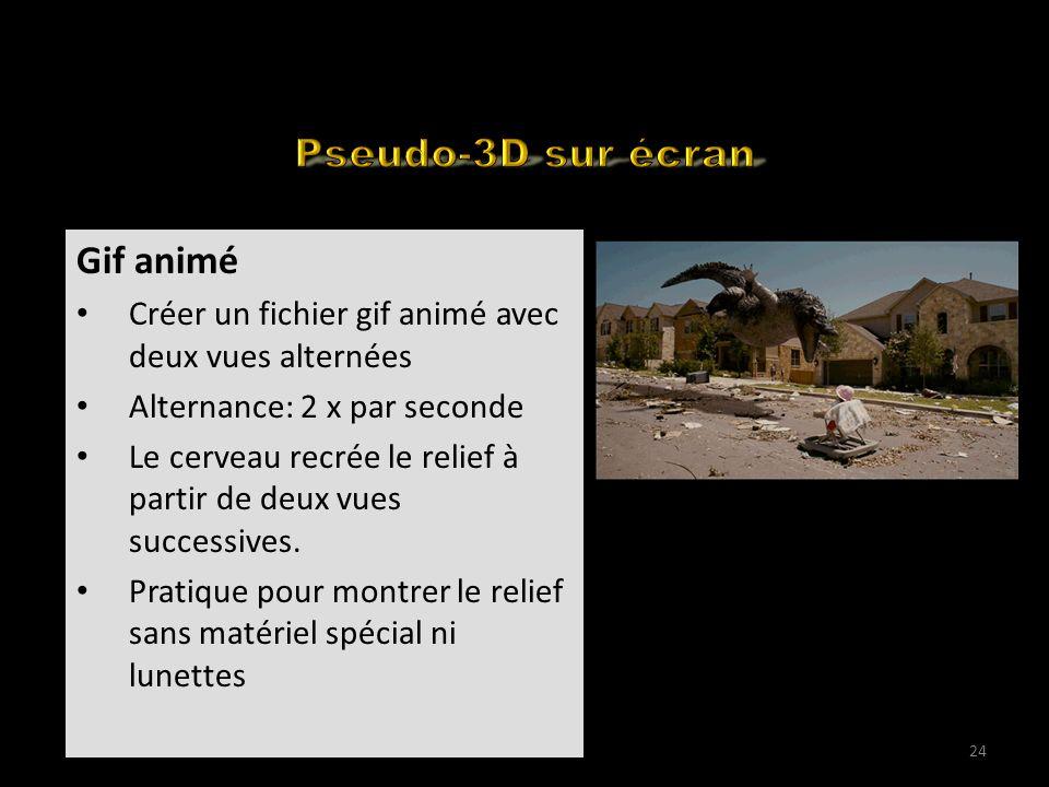 How to edit your 3D for the web (1) Gif animé Créer un fichier gif animé avec deux vues alternées Alternance: 2 x par seconde Le cerveau recrée le rel