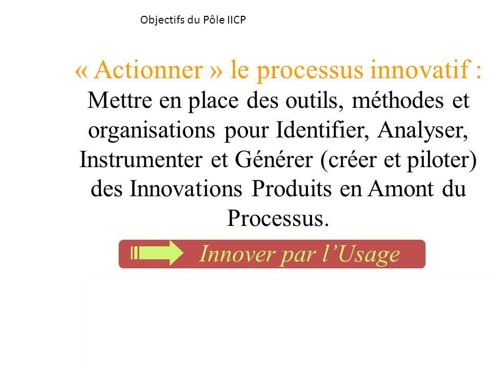 Objectifs du Pôle IICP « Actionner » le processus innovatif : Mettre en place des outils, méthodes et organisations pour Identifier, Analyser, Instrum