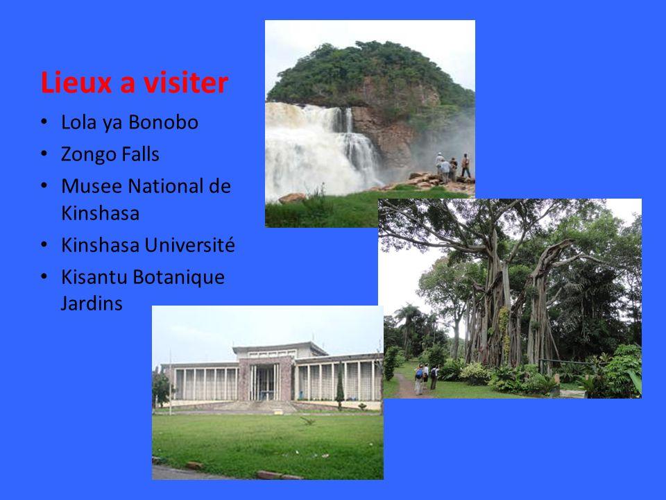 Lieux a visiter Lola ya Bonobo Zongo Falls Musee National de Kinshasa Kinshasa Université Kisantu Botanique Jardins