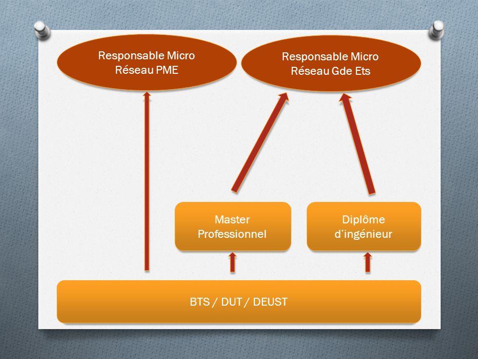 BTS / DUT / DEUST Master Professionnel Diplôme dingénieur Responsable Micro Réseau PME Responsable Micro Réseau Gde Ets