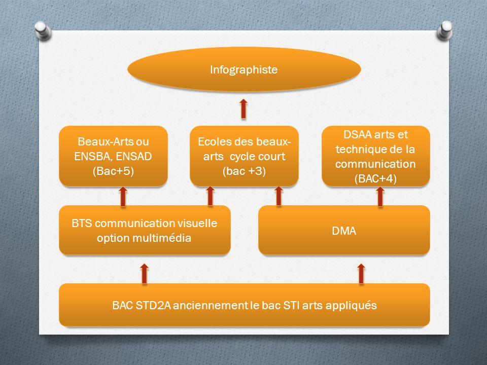 Infographiste BAC STD2A anciennement le bac STI arts appliqués DMA BTS communication visuelle option multimédia Beaux-Arts ou ENSBA, ENSAD (Bac+5) Ecoles des beaux- arts cycle court (bac +3) DSAA arts et technique de la communication (BAC+4)