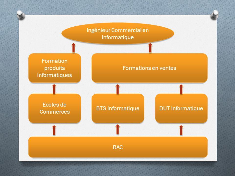Ingénieur Commercial en Informatique BAC Ecoles de Commerces BTS InformatiqueDUT Informatique Formations en ventes Formation produits informatiques