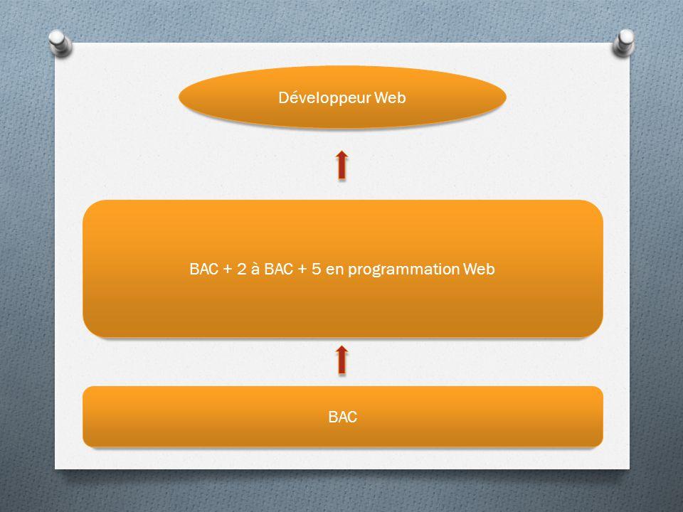 BAC + 2 à BAC + 5 en programmation Web Développeur Web BAC