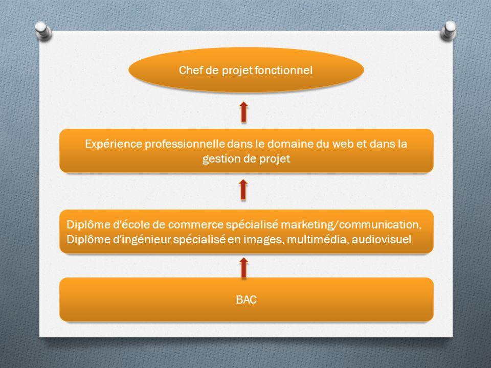 BAC Expérience professionnelle dans le domaine du web et dans la gestion de projet Diplôme d école de commerce spécialisé marketing/communication, Diplôme d ingénieur spécialisé en images, multimédia, audiovisuel Chef de projet fonctionnel