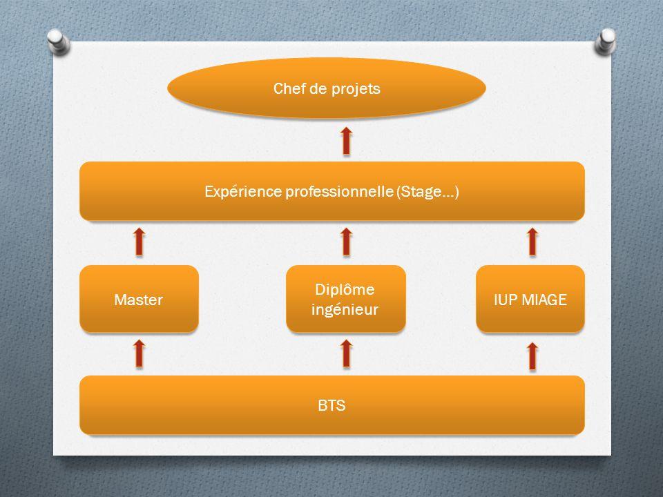 BTS Master Diplôme ingénieur IUP MIAGE Expérience professionnelle (Stage…) Chef de projets