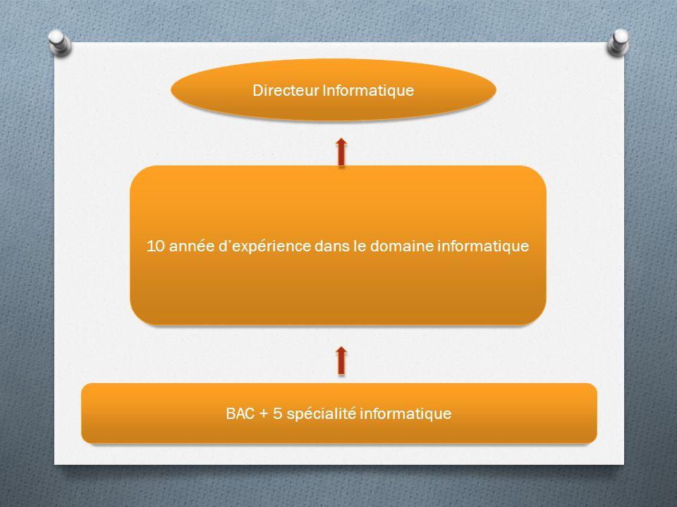 BAC + 5 spécialité informatique Directeur Informatique 10 année dexpérience dans le domaine informatique
