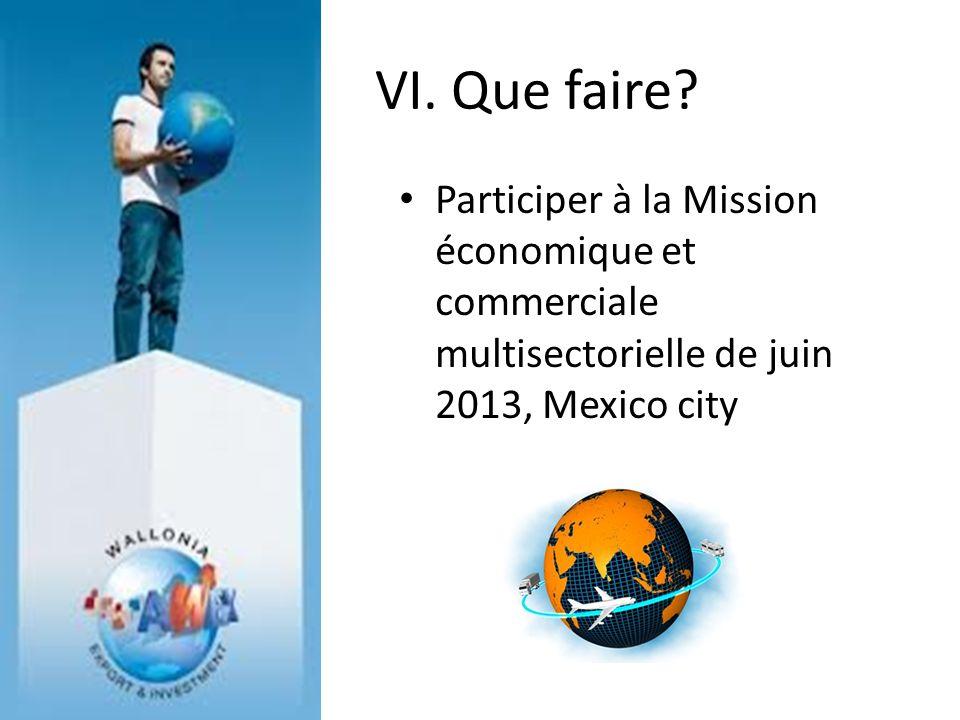 VI. Que faire? Participer à la Mission économique et commerciale multisectorielle de juin 2013, Mexico city