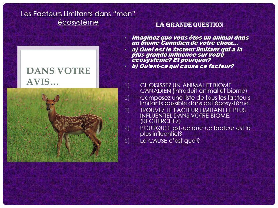 LA GRANDE QUESTION Imaginez que vous êtes un animal dans un biome Canadien de votre choix… a) Quel est le facteur limitant qui a la plus grande influe