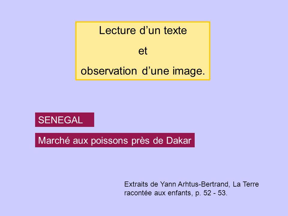 SENEGAL Marché aux poissons près de Dakar Lecture dun texte et observation dune image. Extraits de Yann Arhtus-Bertrand, La Terre racontée aux enfants
