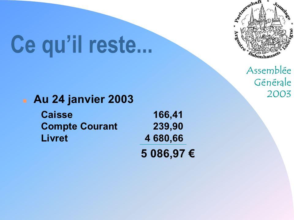 Assemblée Générale 2003 Ce quil reste... n Au 24 janvier 2003 Caisse166,41 Compte Courant239,90 Livret4 680,66 5 086,97
