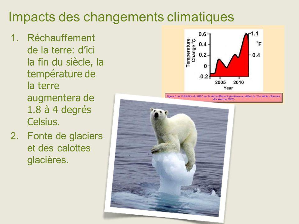 Impacts des changements climatiques Réchauffement de la terre: dici la fin du siècle, la température de la terre augmentera de 1.8 à 4 degrés Celsius.