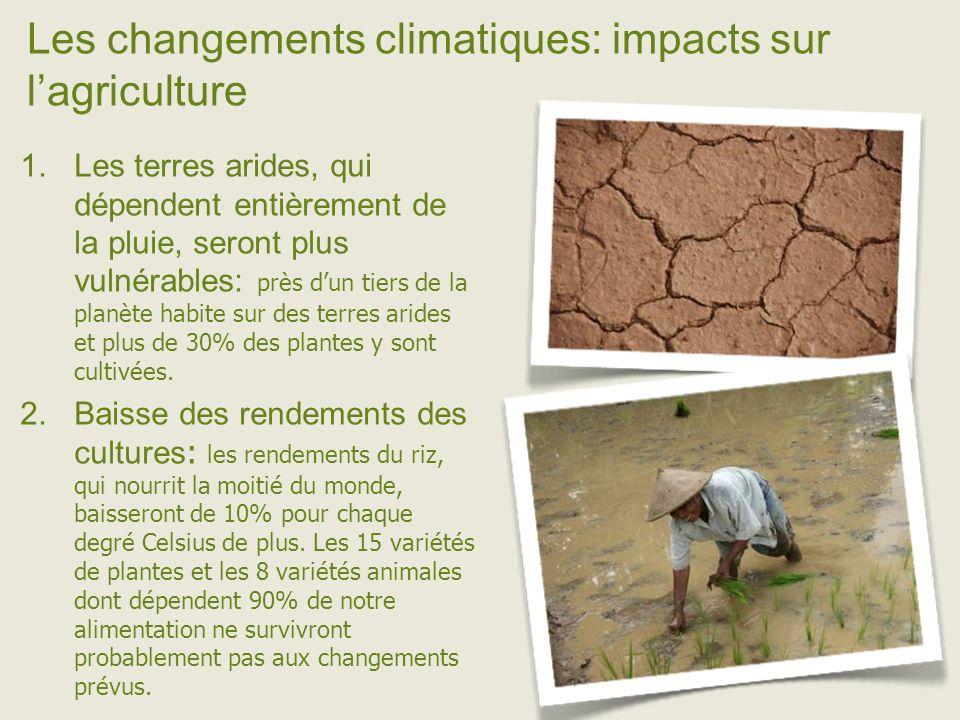 Les changements climatiques: impacts sur lagriculture Les terres arides, qui dépendent entièrement de la pluie, seront plus vulnérables: près dun tiers de la planète habite sur des terres arides et plus de 30% des plantes y sont cultivées.