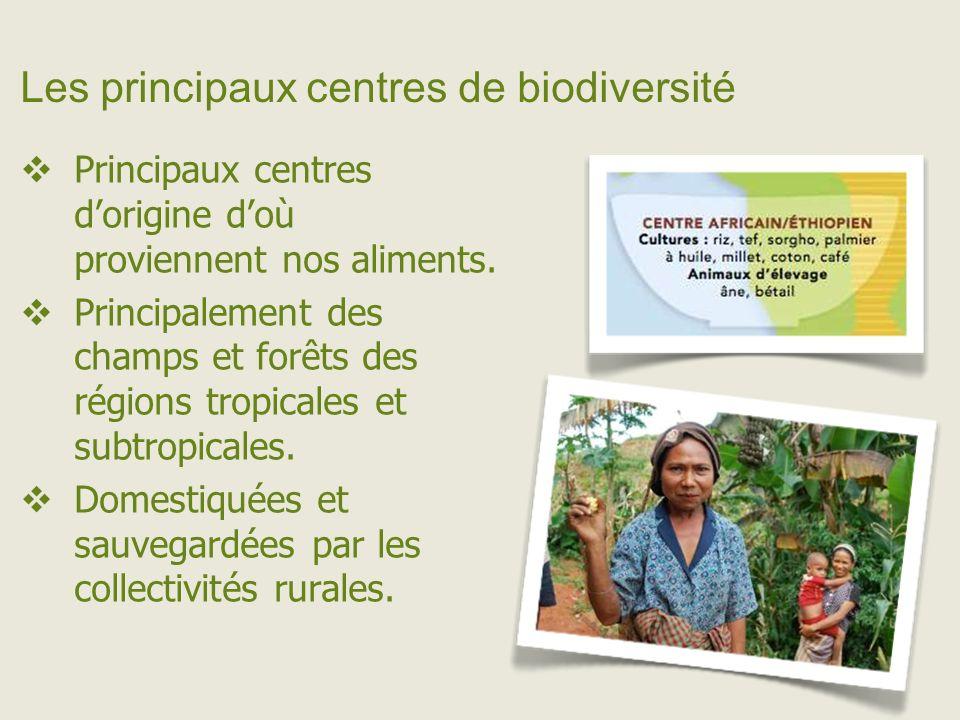 Les principaux centres de biodiversité Principaux centres dorigine doù proviennent nos aliments.