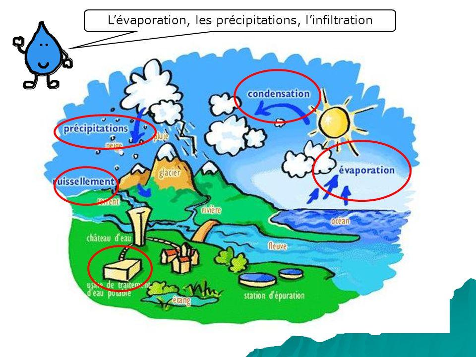Lévaporation, les précipitations, linfiltration