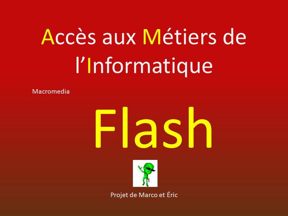 Accès aux Métiers de lInformatique Projet de Marco et Éric Macromedia Flash
