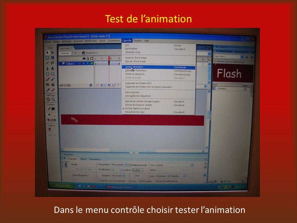 Test de lanimation Dans le menu contrôle choisir tester lanimation
