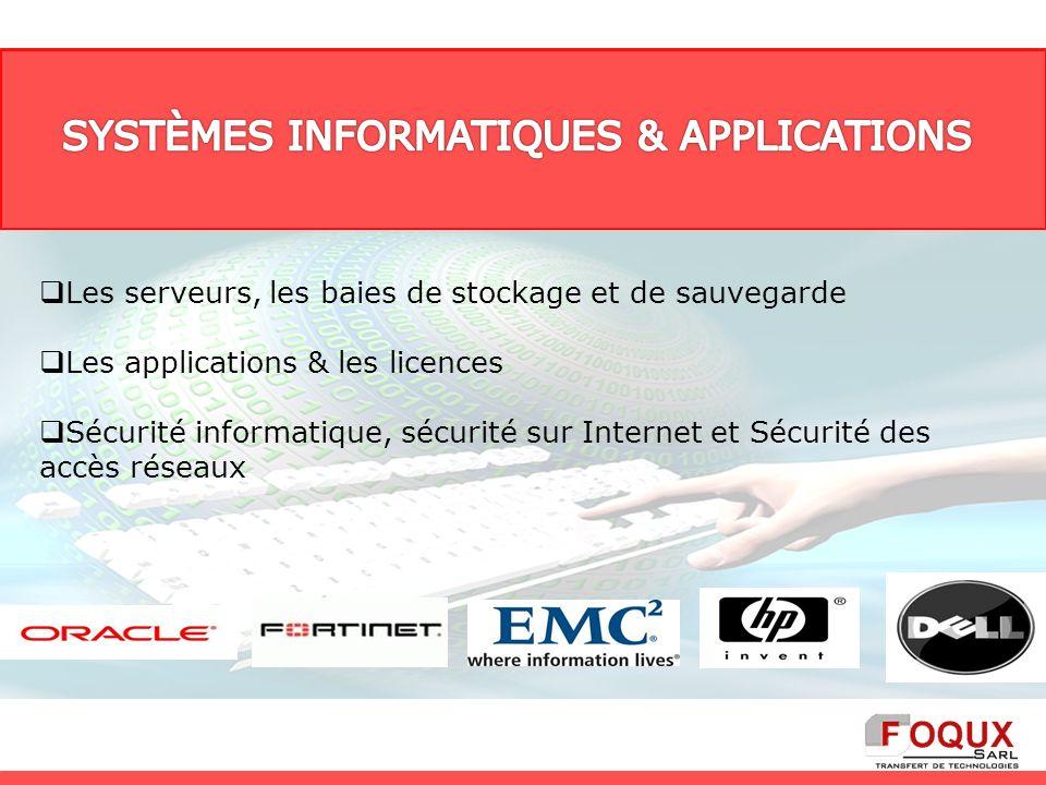 Les serveurs, les baies de stockage et de sauvegarde Les applications & les licences Sécurité informatique, sécurité sur Internet et Sécurité des accè