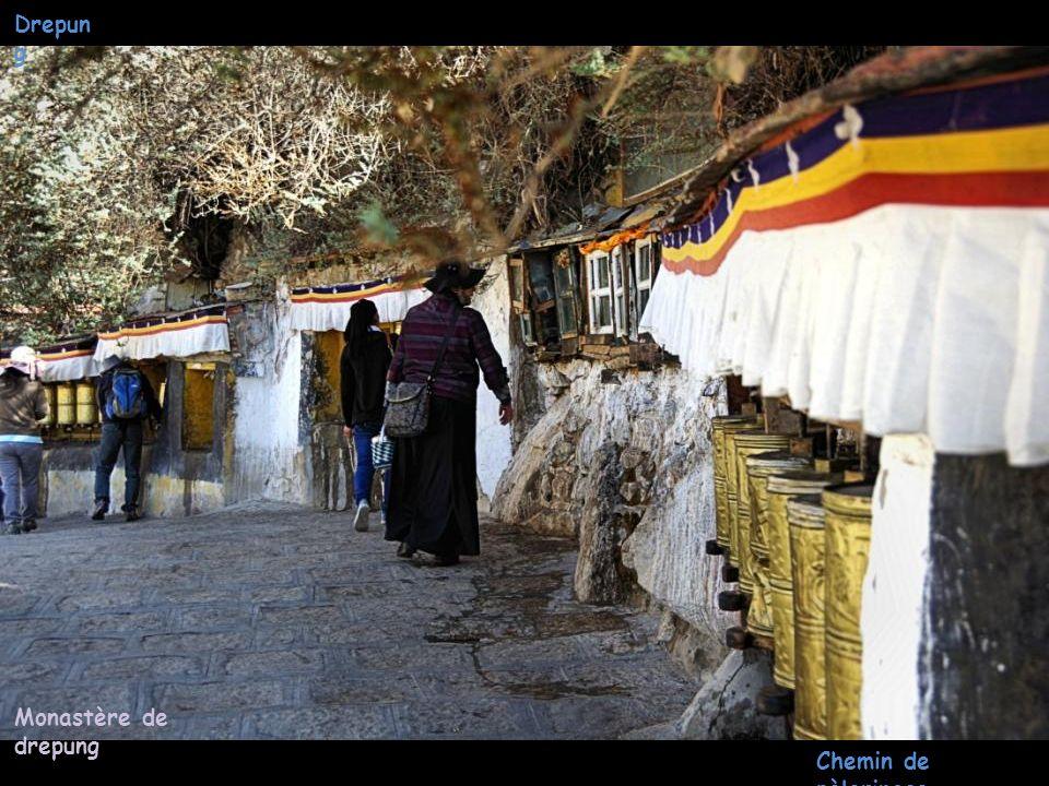 Drepun g Monastère de drepung Bouddhas Peints sur rochers
