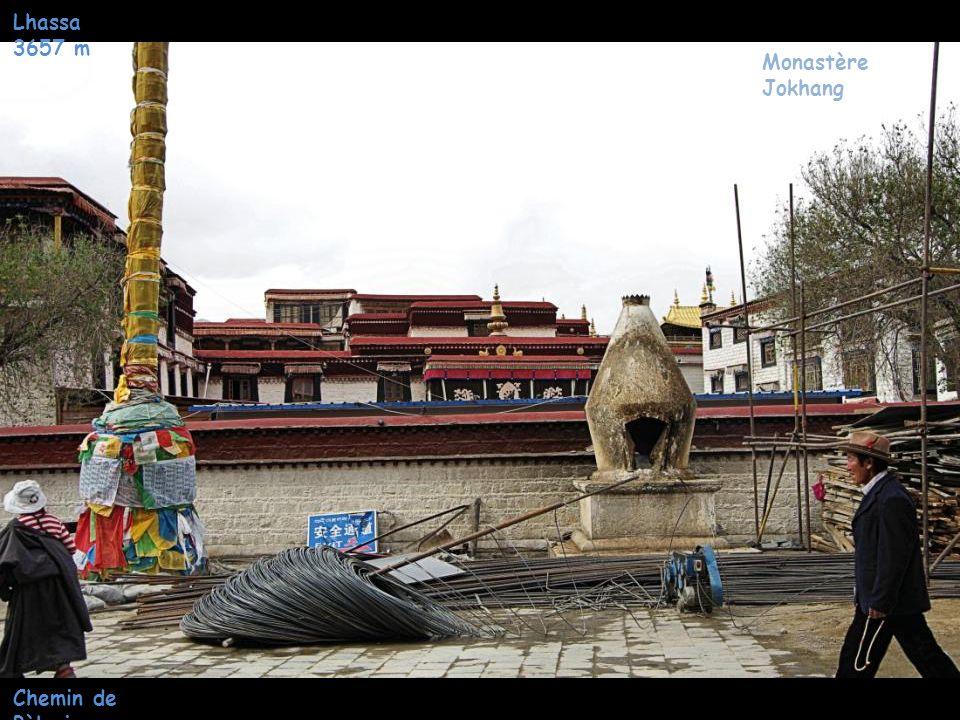 Lhassa 3657 m Quartier Jokhang Homme Khampa