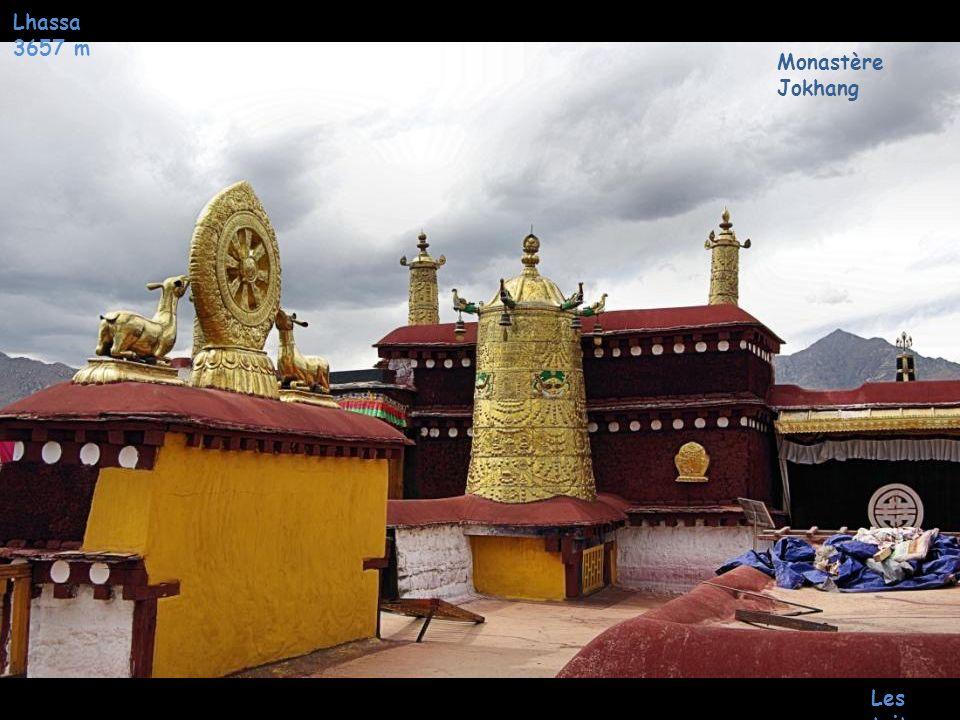 Lhassa 3657 m Monastère Jokhang Les toits