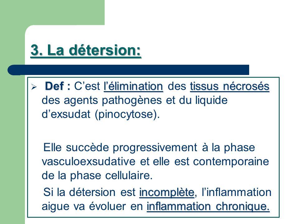 3. La détersion: Def léliminationtissus nécrosés Def : Cest lélimination des tissus nécrosés des agents pathogènes et du liquide dexsudat (pinocytose)