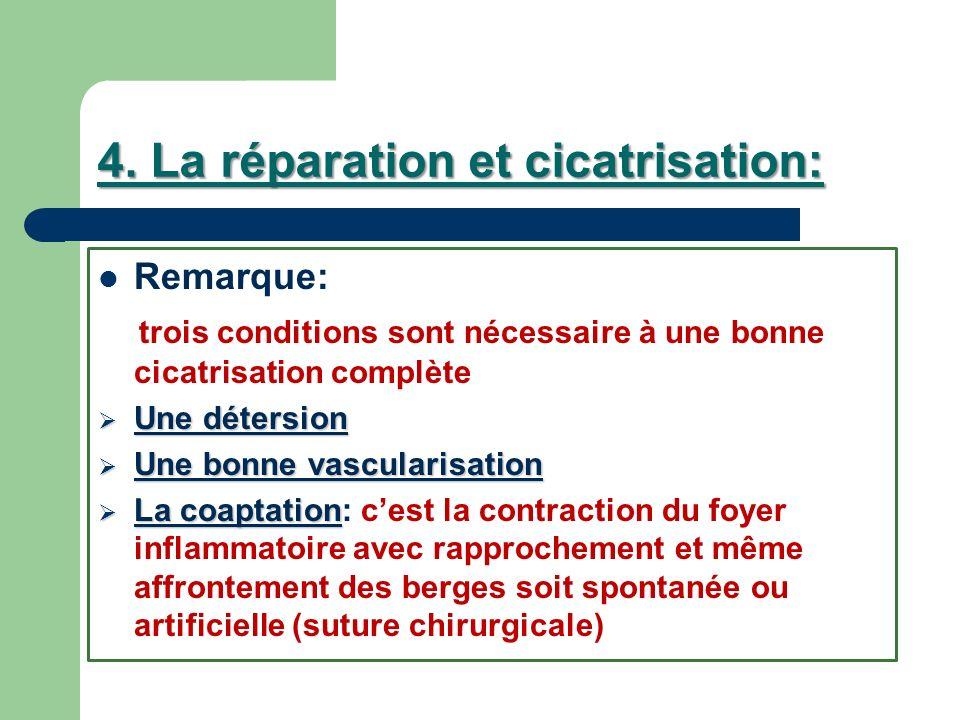 4. La réparation et cicatrisation: Remarque: trois conditions sont nécessaire à une bonne cicatrisation complète Une détersion Une détersion Une bonne