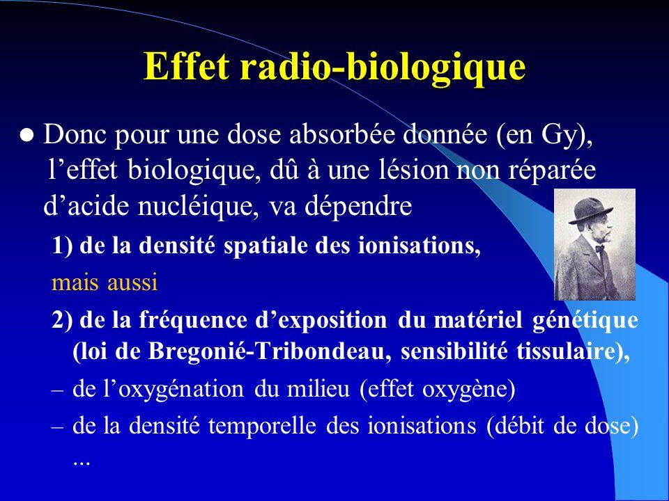 Dose radiobiologique (sievert : Sv) Pour les effets des irradiations localisées, on applique à la dose absorbée en Gy un facteur W R de pondération du rayonnement, égal à 1 pour les, les et les X, supérieur et jusque 20 pour les et autres particules, un facteur W T de pondération tissulaire, inférieur à 1 fonction de la sensibilité du tissu irradié.