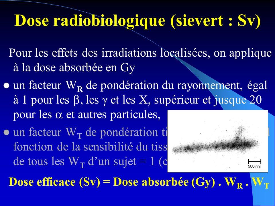Dose radiobiologique (sievert : Sv) Pour les effets des irradiations localisées, on applique à la dose absorbée en Gy un facteur de pondération du rayonnement W R égal à 1 pour les électrons ou les photons, supérieur et jusque 20 pour dautres particules, un facteur de pondération tissulaire W T, inférieur à 1, fonction de la sensibilité du tissu irradié.