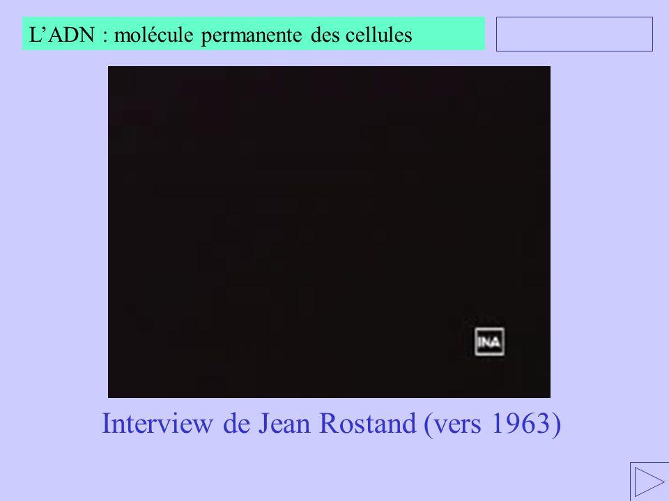 Interview de Jean Rostand (vers 1963) LADN : molécule permanente des cellules