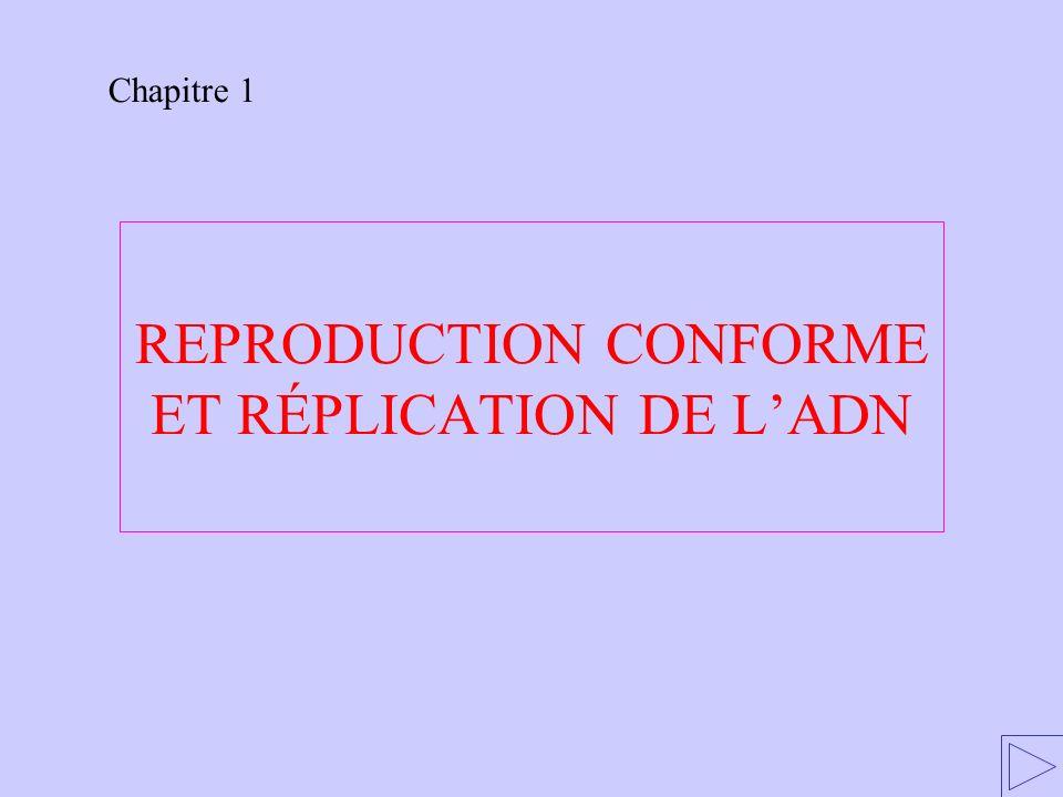 REPRODUCTION CONFORME ET RÉPLICATION DE LADN Chapitre 1
