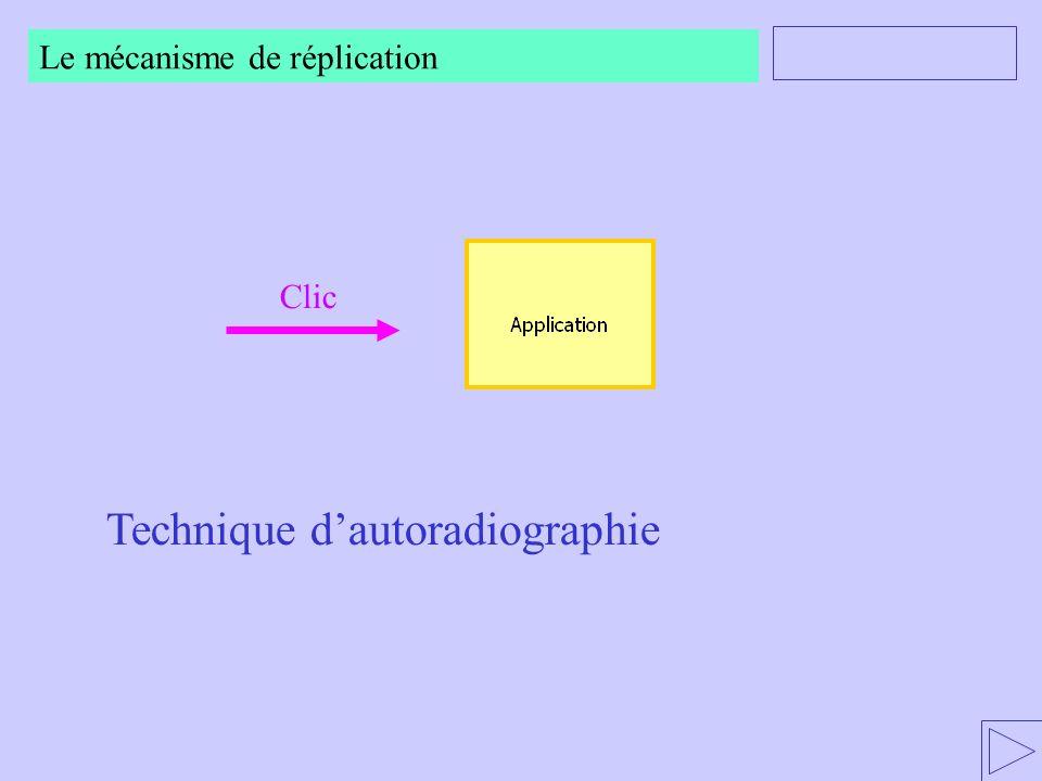 Technique dautoradiographie Clic Le mécanisme de réplication