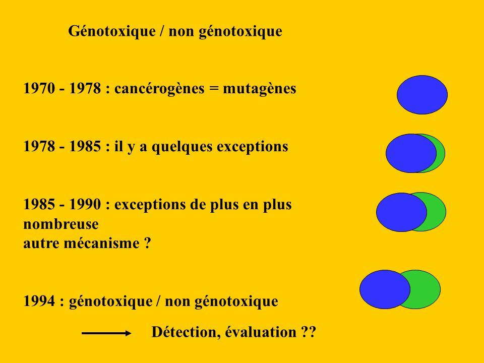 Génotoxique / non génotoxique 1970 - 1978 : cancérogènes = mutagènes 1978 - 1985 : il y a quelques exceptions 1985 - 1990 : exceptions de plus en plus nombreuse autre mécanisme .