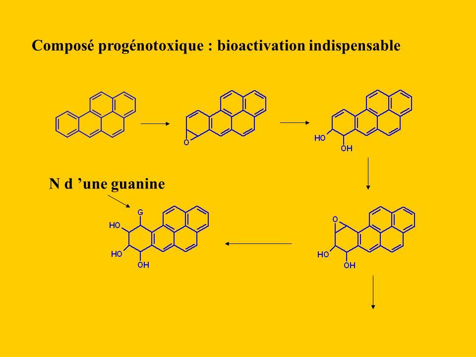 Composé progénotoxique : bioactivation indispensable N d une guanine