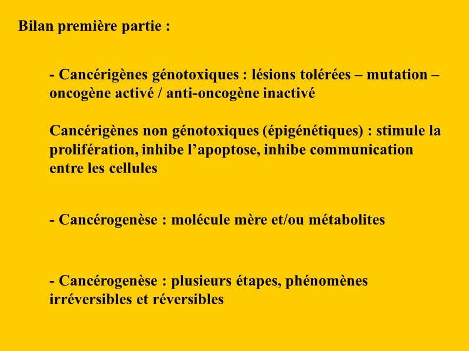 - Cancérigènes génotoxiques : lésions tolérées – mutation – oncogène activé / anti-oncogène inactivé Cancérigènes non génotoxiques (épigénétiques) : stimule la prolifération, inhibe lapoptose, inhibe communication entre les cellules - Cancérogenèse : molécule mère et/ou métabolites Bilan première partie : - Cancérogenèse : plusieurs étapes, phénomènes irréversibles et réversibles